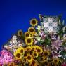Christian Lacroix Kudde FLOWERS GALAXY MULTICOLORECCCL0593X (1-PACK ) Kampanj 25% rabatt på hela köpet över 5000 kr (gäller ej rea och tyger) KOD. GTGYTKXL