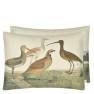 A Nyhet John Derian Kudde BIRDS OF A FEATHER PARCHMENT 60x45 CCJD5060 (2-PACK) Kampanj 25% rabatt på hela köpet över 5000 kr (gäller ej rea och tyger) KOD. GTGYTKXL - 2-pack Kuddar med rabatt