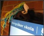 Nättroll som håller koll på eleverna. Foto: Ulrika Gustafsson