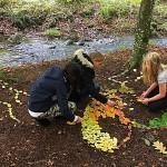 """Land Art projekt """"Allemansrätten genom Land art"""",  med samtliga  åk 7 elever i Sjöbo  kommun, på uppdrag av ARNA i fågelriket och Sjöbo kommun med stöd av Naturvårdsverket"""