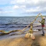 Land art projekt, Allemansrätten genom Land art, åk 7 elever Sjöbo kommun på uppdrag av ARNA i fågelriket och Sjöbo kommun