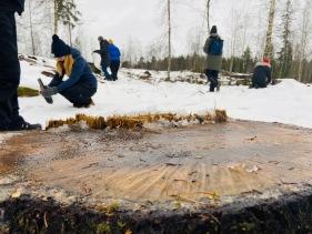 Uppstart med pedagoger från alla förskolor i Sävsjö kommun, 2020
