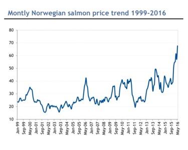 Graf: laxpriserna 99-16E, källa: Arctic Sec.