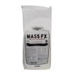 Mass FX 1 kg