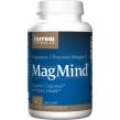 MagMind (Magtein), 90 kaps