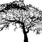 Encaustic Art - Stämpel - Ekträd (Beställningsvara)