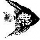 Encaustic Art - Stämpel - Havsängel