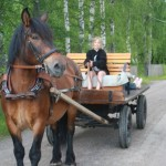 mickan kör häst