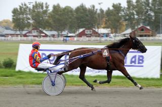Camaro Scoop, Foto: Göran Abrahamson