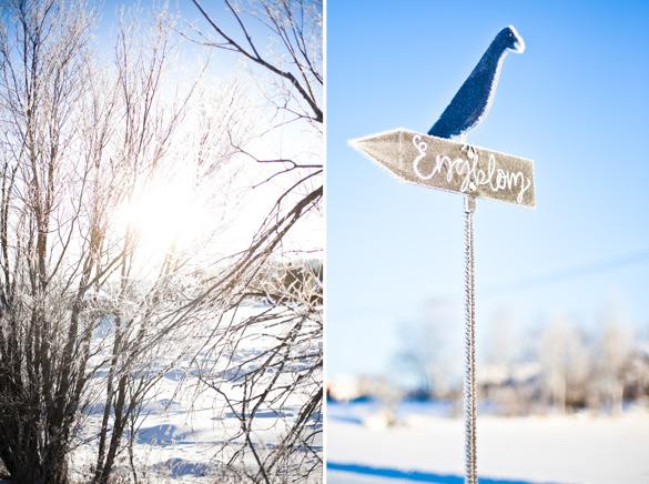 Skylten som visar vägen till mina föräldrars gård, där fågeln just nu är lite kylslagen - men lika vacker för det - har min konstnärliga pappa gjort.