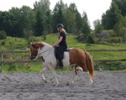 Vackra Svalur e. Randver fra Nyjbae är en av de hästar jag tränat