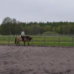 låt hästen trava på lång tygel så länge den är lugn...