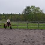 böj hästens mule mot dig, du ska sikta mot att nosen ska komma till stigbygeln...