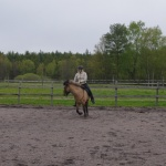 hästen kanske gör motstång men fortsätt bara att mjukt hålla på med det du tänkt...