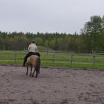 om hästen har svårt med balansen så börjar den snurra, låt den göra det, och om du vill ytterligare skapa moment i övningen, så flytta bakdelen aktivt...
