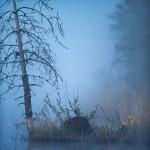 130528-1 bäver kanot