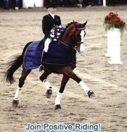 www.positiveriding.com