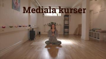 Hemsida medial
