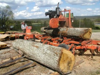 Träförädling - uppsågning av ekstockar med hjälp av portabelt sågverk.