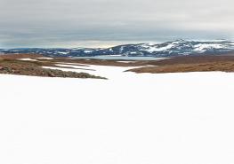 Båtsfjordfjellet 1  Varanger Peninsula / Varangerhalvön