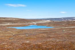 Kongsfjordfjellet 1  Varanger Peninsuls / Varangerhalvön