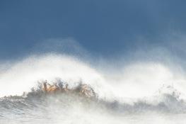 The storm Alfrida / Stormen Alfrida _UAN7305