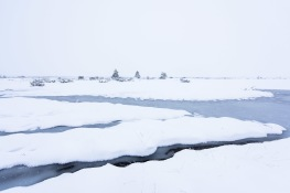 Öland`s world heritage / Öland`s stora alvar_DSC8329