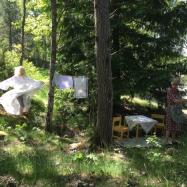 Väsen i skogen