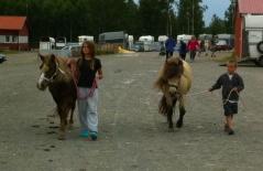 Wera, Diddi, Ludde och Roxette på promenad