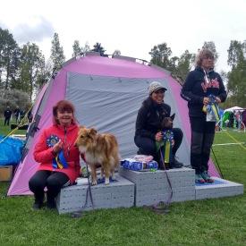 Lena och Foxie tog andra plats med pinne i agility. Foto: Aina Lundkvist