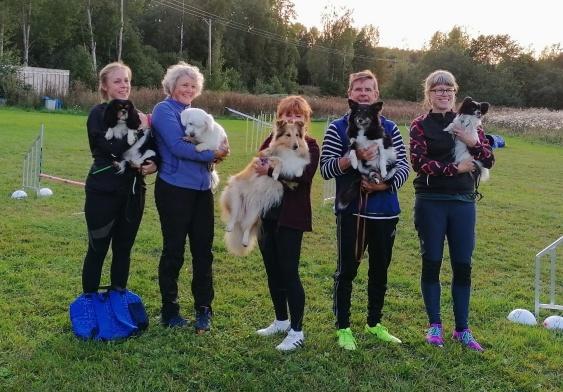 Klubbmästare 2019, från höger: Anna och Aska - 1 plats, Janne och Boogie - 2 plats, Lena och Foxie - 3 plats, Nina och Frans - 4 plats, Lisa och Iris - 5 plats