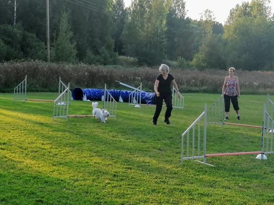 Nina och Frans vann dagens deltävling i nybörjarklassen.