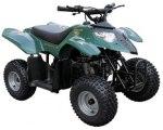 Fyrhjuling / ATV
