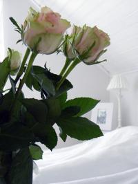 Bröllopsnatt i Falkenberg - romantiskt bröllopspaket med hela Stilla Rum som bröllopssvit. Lugnt, lyxigt & lantligt.