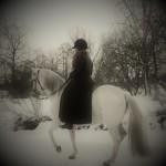 alteza o birgitta i snö på väg... i piaff red Foto Peter Flink