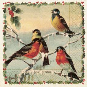 Servett vinterfåglar 33x33 - Servett, vinter fåglar