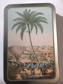 Ask med Vykort, exotic palms -