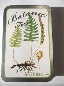 Ask med Vykort, Botanic ferns -
