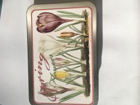 Sköna Ting Springflowers -