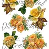 Bild Grafiskt bild gula rosor