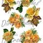 Bild Grafiskt bild gula rosor - Bild Grafisk bild gula rosor 1