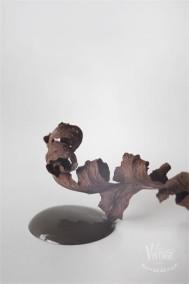 Vintage Paint Chocolate Brown 100ml -