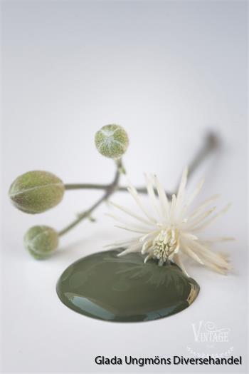 [701133] Olive Green 100ml