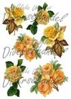 Grafiskt bild gula rosor