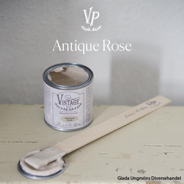 Antique Rose 100ml 600x600px