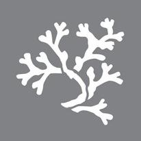Stencil Coral