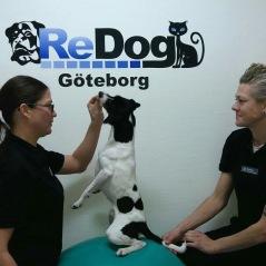 Jenny och Beatha från ReDog
