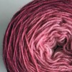 Gradient Selection 150 g - Gradient Selection - 150 g ROSA
