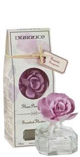 Durance Coloured Scented Flower Eglantine