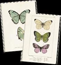 Anteckningsbok Fjärilar, Sköna ting
